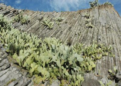 Basalti colonnari